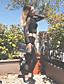 abordables Leggings para Mujer-Mujer Deportivo Cruzado Legging - Un Color, Malla Media cintura