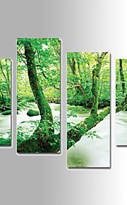 Kanvas set Landskap Fyra paneler Vertikal väggdekor Hem-dekoration