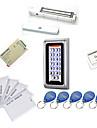 Metal Vattentät Access Controller Kit (magnetlås 280kg, 10 EM-ID-kort, strömförsörjning)