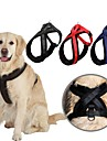 Hond harnassen Verstelbaar / Uitschuifbaar Effen Nylon Zwart Rood Blauw