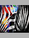Hang-ζωγραφισμένα ελαιογραφία Ζωγραφισμένα στο χέρι - Ζώα Μοντέρνα Περιλαμβάνει εσωτερικό πλαίσιο / Επενδυμένο καμβά
