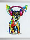 pictate manual pictură în ulei de câine animal cu cască cu ramă de perete 7 intins arts®