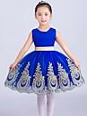 rochie cu rochie scurtă / rochie de flori mini - ghimbir de tul fără mâneci cu aplicație de minunate