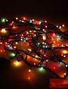 Ljusslingor 100 lysdioder Slumpmässig färg 110V