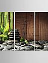 Imprimeu pânză întins Abstract, Trei Panouri pânză Vertical Imprimeu Decor de perete Pagina de decorare