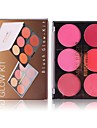 2 Colors Makeup Set Pressed powder Blush Dry / Matte Face China Makeup Cosmetic ABS