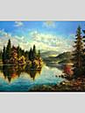 Pictat manual Peisaj Panoramică orizontală pânză Hang-pictate pictură în ulei Pagina de decorare Un Panou